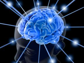 Ученые выяснили, что грамотность меняет мозг