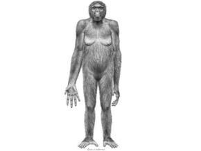 Недостающее звено в эволюции: В Эфиопии найден древнейший предок человека