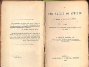 Перше видання «Походження видів» Дарвіна продали за 172 тисячі доларів