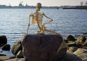 В Копенгагене выставили скелет мертвой русалки
