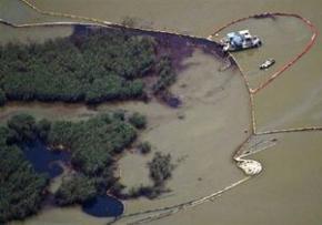 Влада США визнала розлив нафти в Мексиканській затоці найбільшою екологічною катастрофою