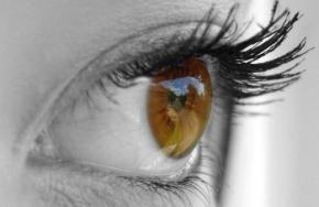 Вчені виявили відповідальні за колір очей гени