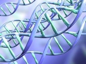 Тварини втратили два гени при еволюційному переході від риб