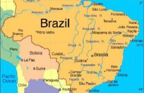 У берегов Бразилии обнаружен новый вид рыбы
