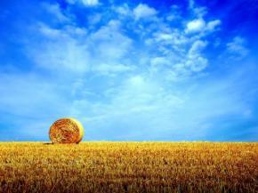 На вихідних Україна буде плавитись від рекордної спеки