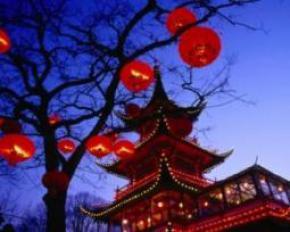Китаец прожил на дереве три месяца