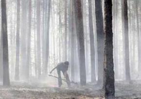 В Украине сохраняется чрезвычайная пожарная опасность. Не страшно только на западе