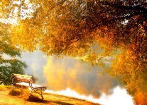 Вихідні потішать українців теплою погодою