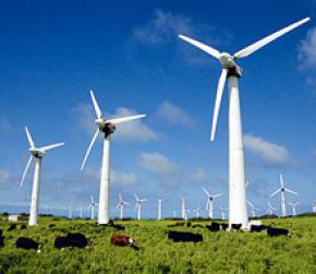 В Украину придут инвестиции в альтернативную энергетику
