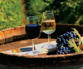 В 2011-м в Украину начнут беспошлинно ввозить импортное вино