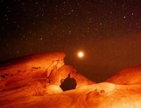 Відправка на Марс земних бактерій може призвести до зараження планети