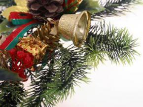 Житель Британии решил жениться на рождественской елке