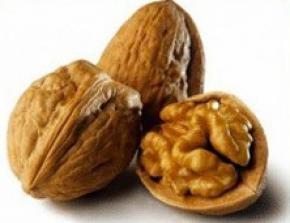 Волоський горіх - чудодійний засіб проти багатьох недуг