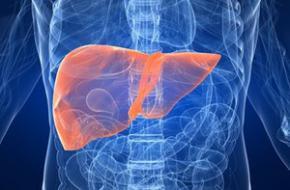 Печінка - продукти які корисні для печінки, як зберегти і очистити печінку