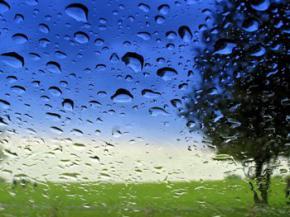 В Украине на выходные дождь