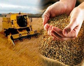 Сельское хозяйство - единственная надежда экономики Украины