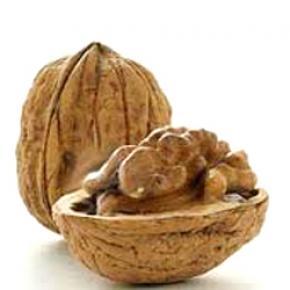 Грецкие орехи защищают от болезней сердца, - Ученые
