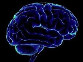 Ученые обнаружили в мозге протеин, вызывающий стресс и депрессию