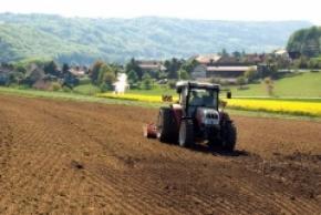 Урожай ягод и фруктов 2013 в Украине увеличится на 50 тыс. тонн