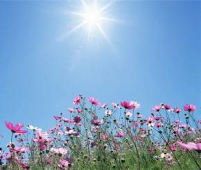 На вихідні в Україні буде суха і тепла погода