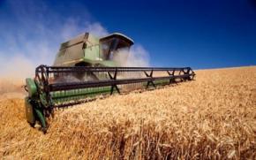 До 2020 року Україна зможе експортувати до 41 мільйона тонн зерна