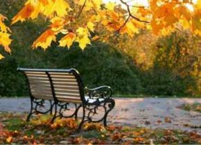 Впродовж вихідних погода в Україні буде покращуватися, а з 23 жовтня знову потеплішає