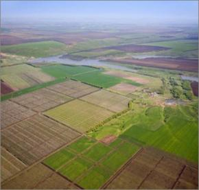 У Харківській області землю оформляють на
