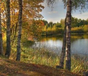 Синоптики пообещали сухую и теплую погоду в Украине до конца недели