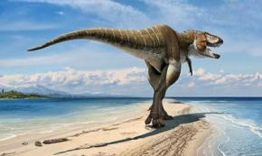 Ученые открыли новый вид динозавра Lythronax argestes