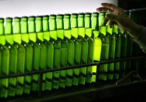 Повышение акцизов на пиво спасет украинцев от пивного алкоголизма, - Нардеп
