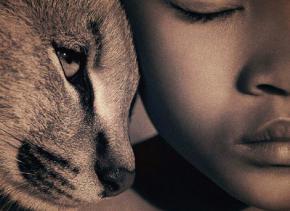 Найдены первые свидетельства дружбы кошек и людей
