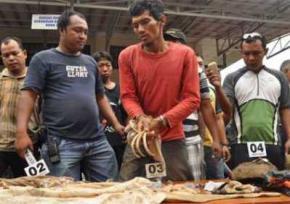 Индонезиец вскрыл могилу близнецов, для возможности летать и становиться невидимым