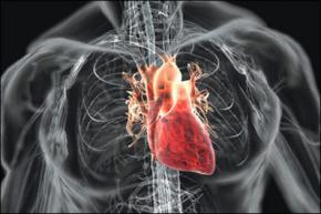 Проведена перша в світі операція з імплантації повністю автономного штучного серця