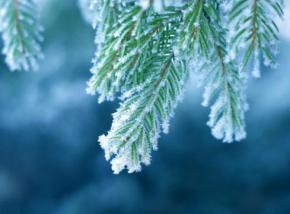 З 28 січня в Україні очікується невелике потепління