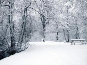 Снежный циклон похозяйничает в стране до 23 января