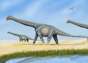 У Китаї знайдено новий вид титанозаврів Yongjinglong datangi