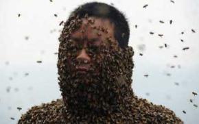 Пасечник посадил на свое тело 460 тысяч пчел, стремясь продать побольше меда