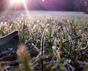11-12 квітня в Україну йдуть заморозки, а з 13 квітня очікується потепління