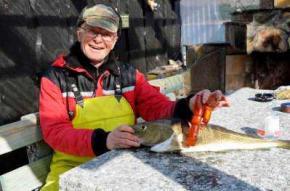 Рыбак поймал треску внутри которой оказался фаллоимитатор