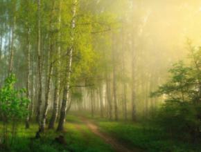 Сьогодні, 13 травня, в Україні місцями дощитиме