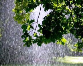 16 мая, в Украине продолжатся дожди и грозы