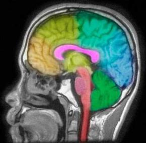 Ученые выяснили, почему девочки склонны к депрессии, а мальчики к шизофрении