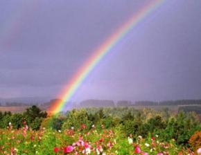 14-16 мая в Украине объявлено штормовое предупреждение