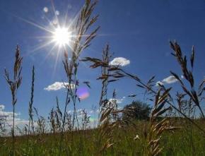 На выходных в Украине будет жарко