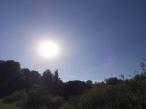 Сегодня, 12 июня в Украине тепло и облачно