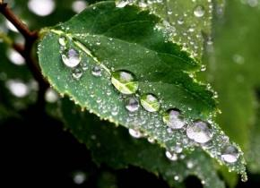 Коли в Україні припиняться дощі?