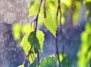 На вихідних в Україні очікуються зливи та грози