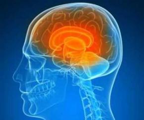 Ученые развеяли миф о том, что человек использует лишь 10% мозга