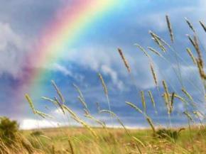 Сьогодні на заході і сході України очікуються грозові дощі
