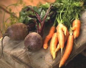 Россия готовит запрет на импорт лука, моркови и свеклы из Украины